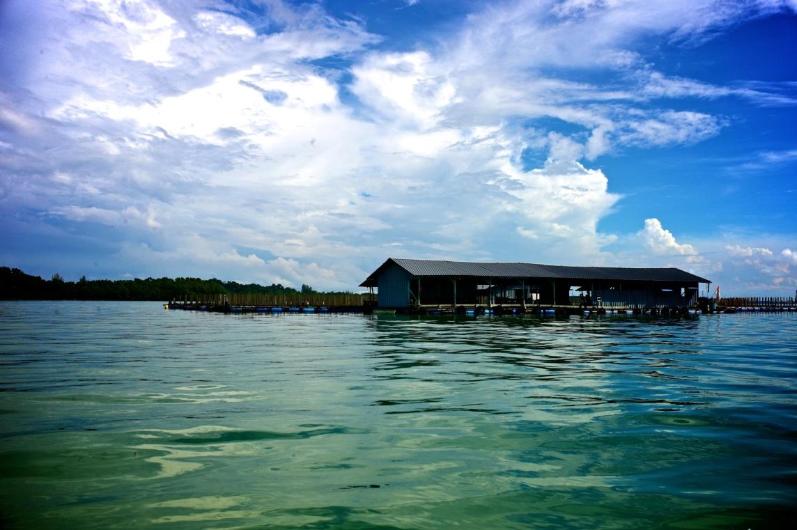 Hai Loong Marineculture 06