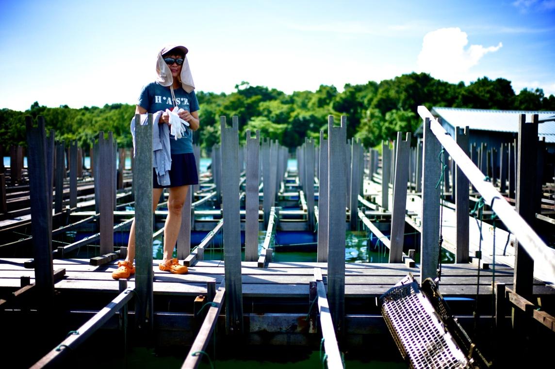 Hai Loong Marineculture 13