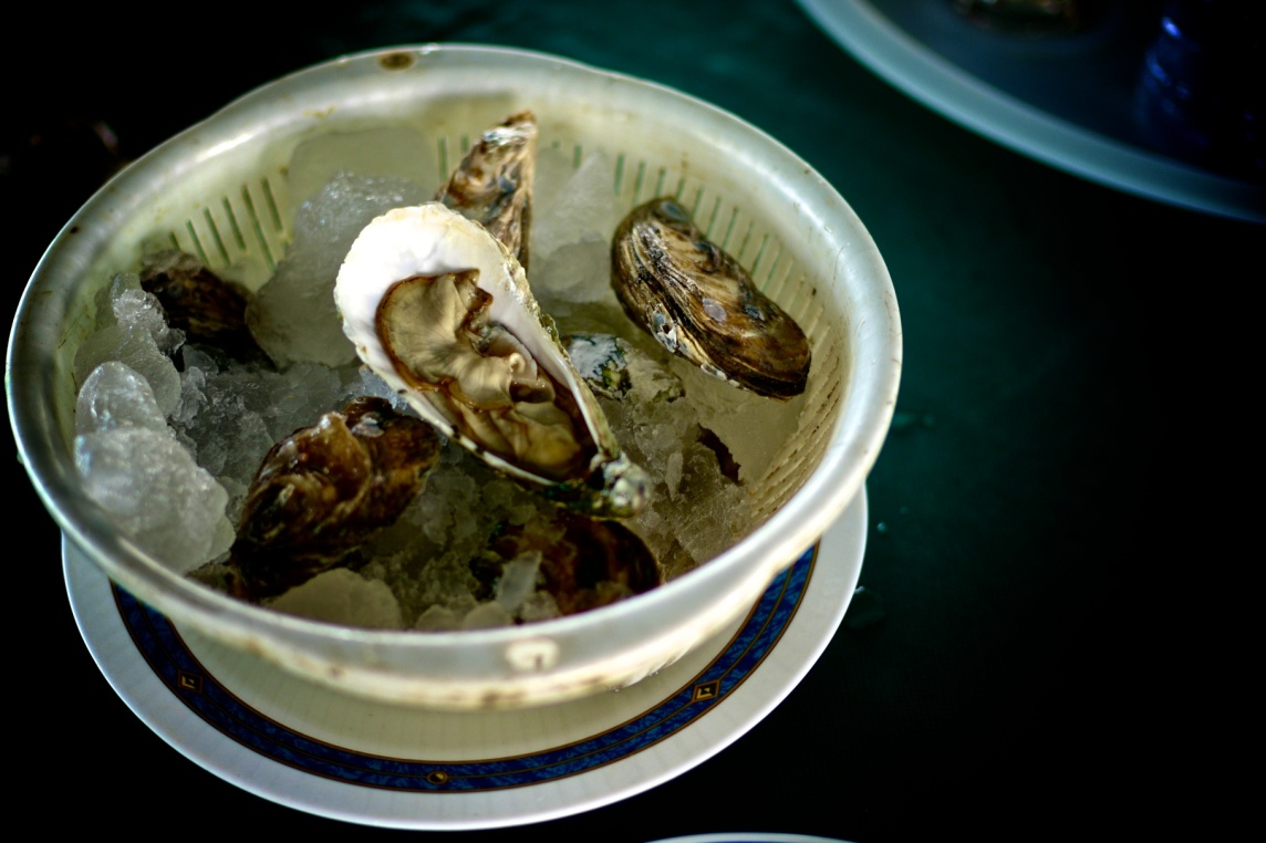 Hai Loong Marineculture 19