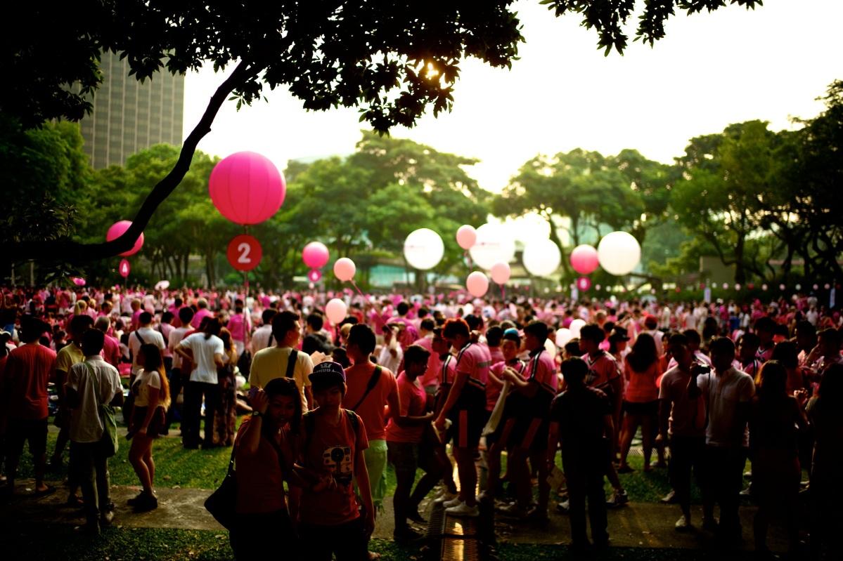Pink Dot 2013 30