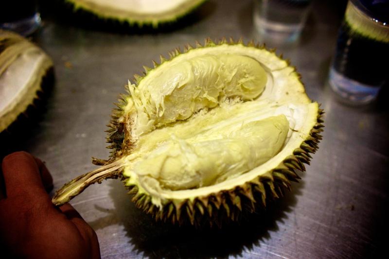 Durians 19