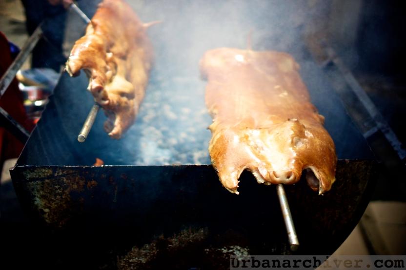 Roast PIg 09