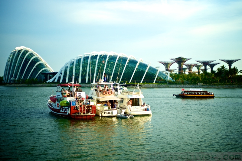 Singapore Formula 1 2013 48