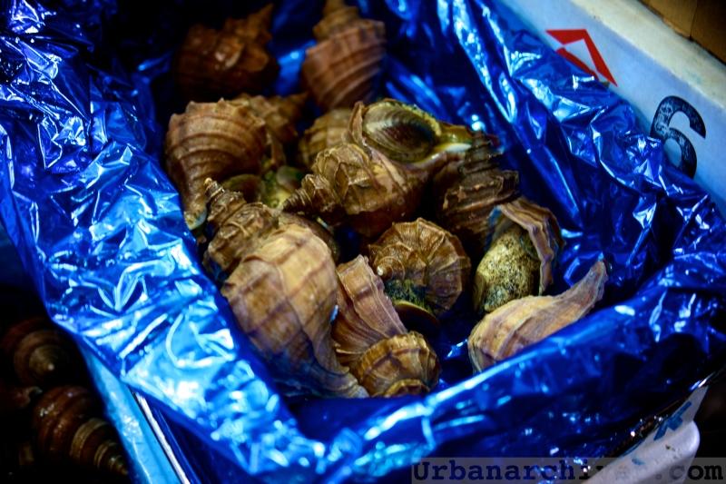 Tsukiji Sushi Dai Aiyo Coffee 13
