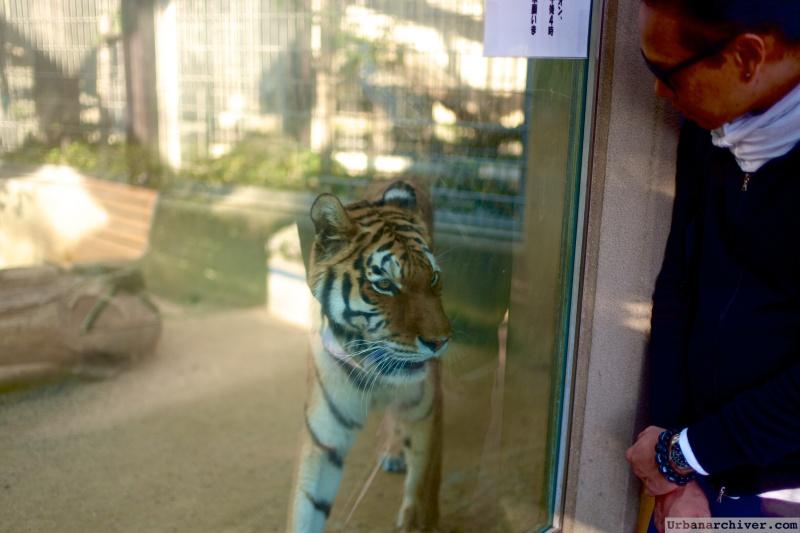 Kobe Oji Zoo 14