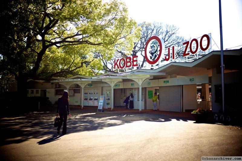 Kobe Oji Zoo 26