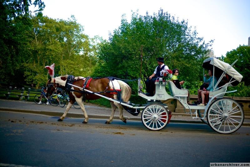 New York Central Park 6